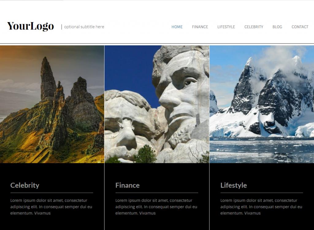 Website Demo - Business/Professional