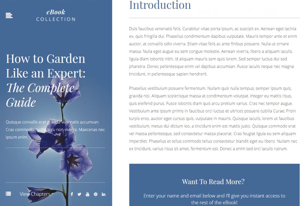 Website Demo - EBook Author